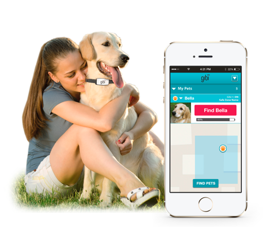 Gibi tracks your pets 24/7 so you can find them quickly & easily.